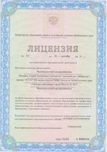 Лицензия 1 001